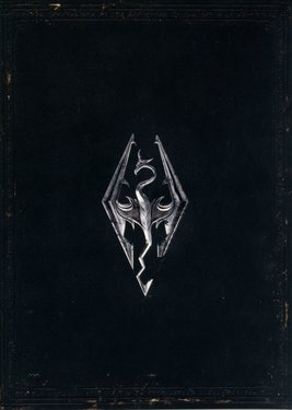 The Elder Scrolls V: Skyrim постер (cover)