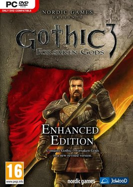 Gothic 3: Forsaken Gods Enhanced Edition постер (cover)