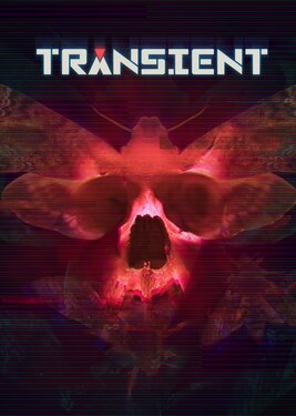 Transient постер (cover)