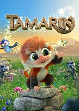 Tamarin постер (cover)