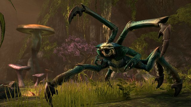 The Elder Scrolls Online: Elsweyr - Collector's Edition Upgrade