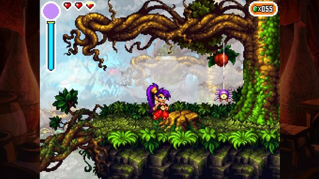 Shantae: Risky's Revenge - Director's Cut